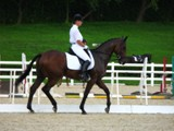 Dressage at the Olympic Test Event